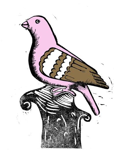 pigeonpinkandgold