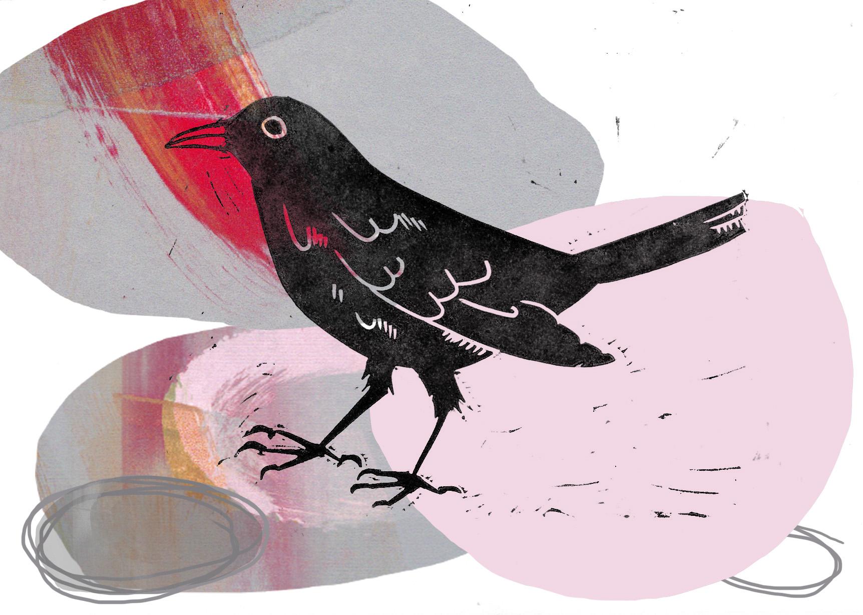 blackbirdcollage