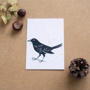 blackbirdlino