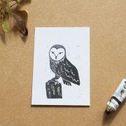 owllino